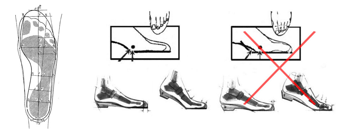 The length of the shoe on a long insole (the length of the inner space of the shoe) should be at least 10 mm (0.39 inch) longer than the foot